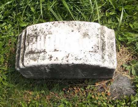 WILLCOX, RHODA - Trumbull County, Ohio | RHODA WILLCOX - Ohio Gravestone Photos