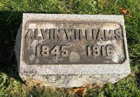 WILLIAMS, ALVIN - Trumbull County, Ohio   ALVIN WILLIAMS - Ohio Gravestone Photos