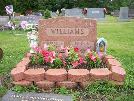 WILLIAMS, EDITH - Trumbull County, Ohio | EDITH WILLIAMS - Ohio Gravestone Photos
