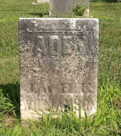 WILLIAMSON, ADEN - Trumbull County, Ohio | ADEN WILLIAMSON - Ohio Gravestone Photos
