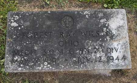 WILSON, FOREST RAY - Trumbull County, Ohio   FOREST RAY WILSON - Ohio Gravestone Photos