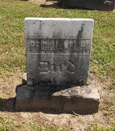 WRIGHT, PRISCILLA - Trumbull County, Ohio | PRISCILLA WRIGHT - Ohio Gravestone Photos