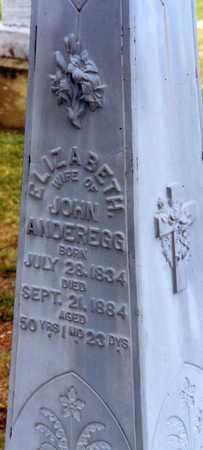 WYLER ANDEREGG, ELIZABETH - Tuscarawas County, Ohio | ELIZABETH WYLER ANDEREGG - Ohio Gravestone Photos