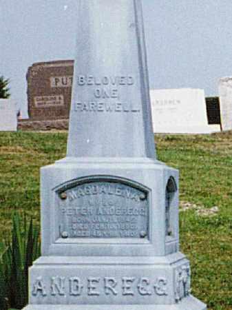 WYLER ANDEREGG, MAGDALENA - Tuscarawas County, Ohio | MAGDALENA WYLER ANDEREGG - Ohio Gravestone Photos
