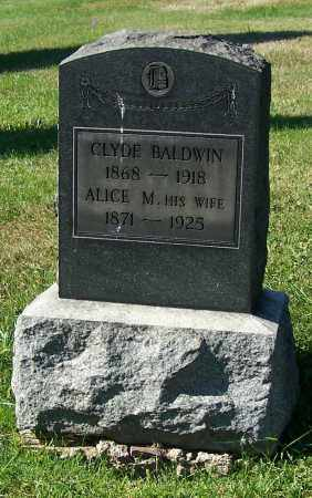 BALDWIN, ALICE M. - Tuscarawas County, Ohio | ALICE M. BALDWIN - Ohio Gravestone Photos
