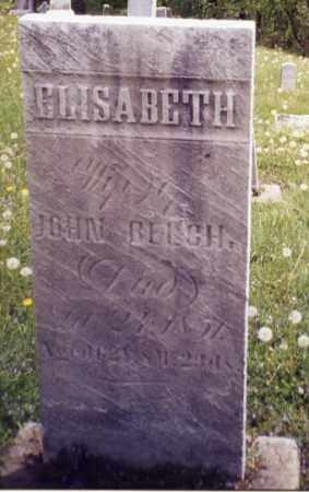 BELCH, ELIZABETH - Tuscarawas County, Ohio | ELIZABETH BELCH - Ohio Gravestone Photos