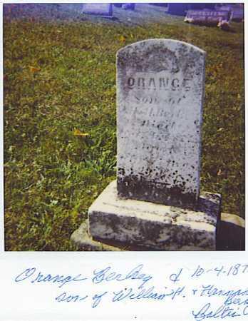 BERKEY, ORANGE - Tuscarawas County, Ohio | ORANGE BERKEY - Ohio Gravestone Photos