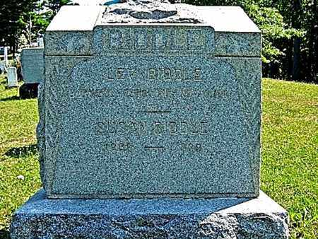 BIDDLE, LEVI - Tuscarawas County, Ohio | LEVI BIDDLE - Ohio Gravestone Photos