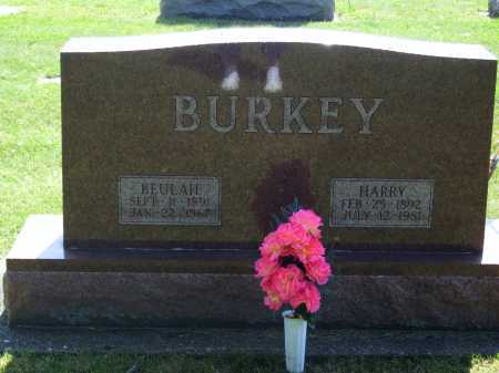 BURKEY, HARRY - Tuscarawas County, Ohio | HARRY BURKEY - Ohio Gravestone Photos