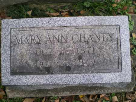 CHANEY, MARY ANN - Tuscarawas County, Ohio | MARY ANN CHANEY - Ohio Gravestone Photos