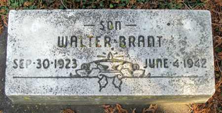 CUNNINGHAM, WALTER BRANT - Tuscarawas County, Ohio | WALTER BRANT CUNNINGHAM - Ohio Gravestone Photos