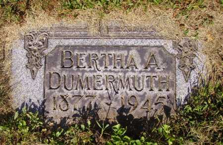 DUMERMUTH, BERTHA A. - Tuscarawas County, Ohio | BERTHA A. DUMERMUTH - Ohio Gravestone Photos