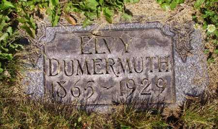 GONTER DUMERMUTH, ELVY - Tuscarawas County, Ohio | ELVY GONTER DUMERMUTH - Ohio Gravestone Photos
