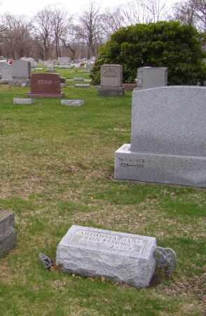 EDINGTON EDIE, ARTIMISSIA JANE - Tuscarawas County, Ohio   ARTIMISSIA JANE EDINGTON EDIE - Ohio Gravestone Photos