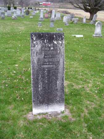 EDIE, MARIA - Tuscarawas County, Ohio | MARIA EDIE - Ohio Gravestone Photos