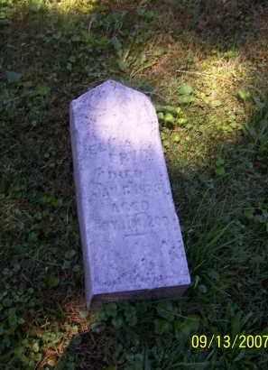 ERVIN, ELIZABETH - Tuscarawas County, Ohio | ELIZABETH ERVIN - Ohio Gravestone Photos