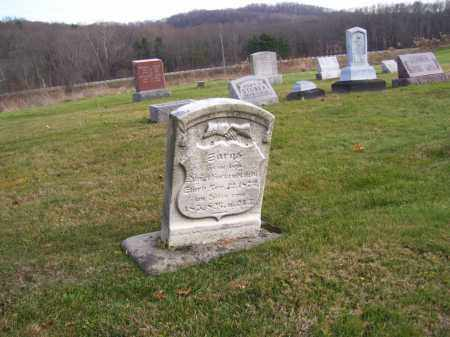 HUMRICKHOUSE HACKENBRACHT, SARAH - Tuscarawas County, Ohio | SARAH HUMRICKHOUSE HACKENBRACHT - Ohio Gravestone Photos