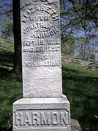 HARMON, ELIZABETH - Tuscarawas County, Ohio | ELIZABETH HARMON - Ohio Gravestone Photos