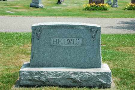 ELEY HELWIG, BEATA A. - Tuscarawas County, Ohio | BEATA A. ELEY HELWIG - Ohio Gravestone Photos