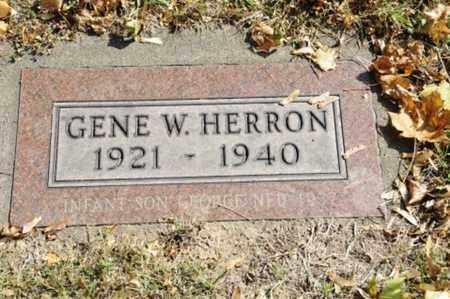 HERRON, GEORGE NED - Tuscarawas County, Ohio | GEORGE NED HERRON - Ohio Gravestone Photos