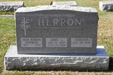 HERRON STEPHENS, JOAN - Tuscarawas County, Ohio | JOAN HERRON STEPHENS - Ohio Gravestone Photos