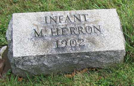 HERRON, M. (INFANT) - Tuscarawas County, Ohio | M. (INFANT) HERRON - Ohio Gravestone Photos