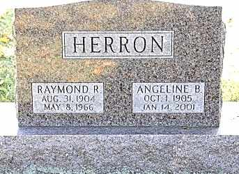 HERRON, ANGELINE B. - Tuscarawas County, Ohio | ANGELINE B. HERRON - Ohio Gravestone Photos
