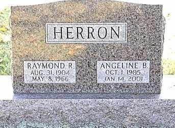 HERRON, RAYMOND R. - Tuscarawas County, Ohio | RAYMOND R. HERRON - Ohio Gravestone Photos
