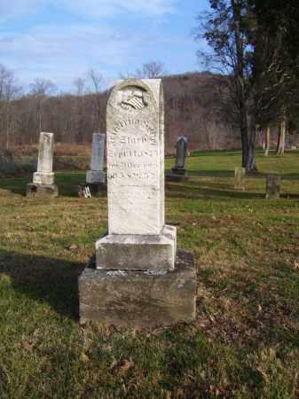 HODEL, FREDRICH - Tuscarawas County, Ohio | FREDRICH HODEL - Ohio Gravestone Photos