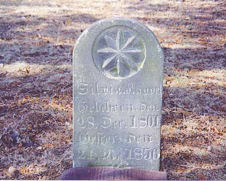KAPPEL KAPPEL, BARBARA SYLVIA - Tuscarawas County, Ohio | BARBARA SYLVIA KAPPEL KAPPEL - Ohio Gravestone Photos