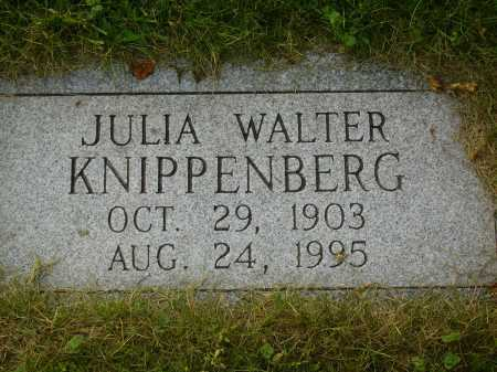 KNIPPENBERG, JULIA - Tuscarawas County, Ohio | JULIA KNIPPENBERG - Ohio Gravestone Photos