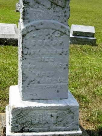 LINT, LLOYD - Tuscarawas County, Ohio | LLOYD LINT - Ohio Gravestone Photos