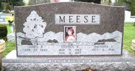 MEESE, STEPHEN ROBERT - Tuscarawas County, Ohio | STEPHEN ROBERT MEESE - Ohio Gravestone Photos