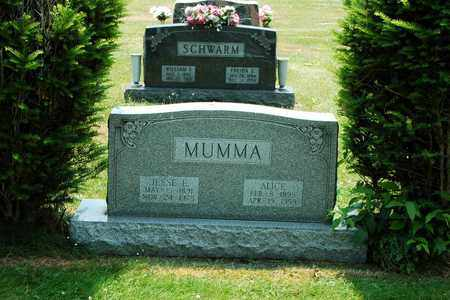KING MUMMA, ALICE - Tuscarawas County, Ohio | ALICE KING MUMMA - Ohio Gravestone Photos