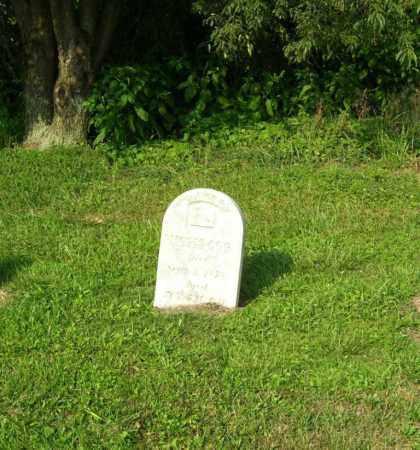 OGG, MOSES - Tuscarawas County, Ohio | MOSES OGG - Ohio Gravestone Photos