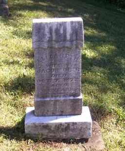 OLER, ELIZABETH - Tuscarawas County, Ohio | ELIZABETH OLER - Ohio Gravestone Photos