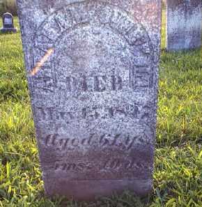 OVERHOLT, ABRAHAM - Tuscarawas County, Ohio | ABRAHAM OVERHOLT - Ohio Gravestone Photos