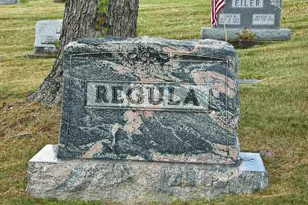 REGULA, ALBERT - Tuscarawas County, Ohio | ALBERT REGULA - Ohio Gravestone Photos
