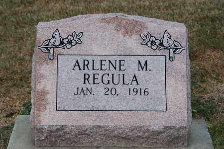 REGULA, ARLENE M. - Tuscarawas County, Ohio | ARLENE M. REGULA - Ohio Gravestone Photos