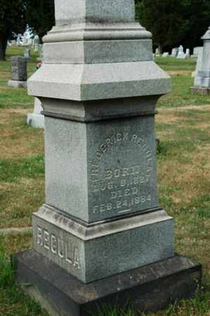 REGULA, FREDERICK - Tuscarawas County, Ohio | FREDERICK REGULA - Ohio Gravestone Photos