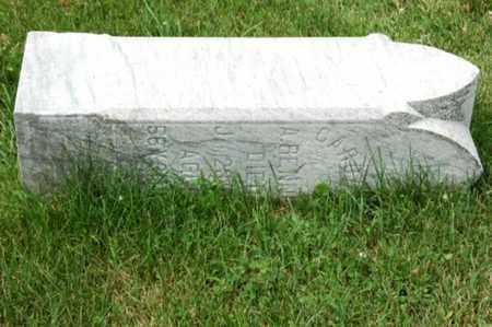 RENNER, CAROLINE - Tuscarawas County, Ohio | CAROLINE RENNER - Ohio Gravestone Photos