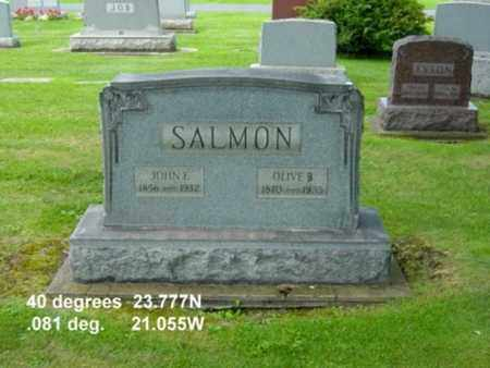 SALMON, OLIVE B. - Tuscarawas County, Ohio | OLIVE B. SALMON - Ohio Gravestone Photos