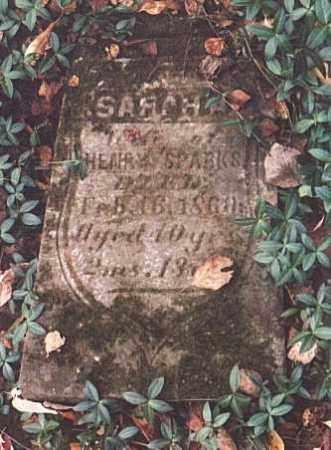 SPARKS, SARAH - Tuscarawas County, Ohio | SARAH SPARKS - Ohio Gravestone Photos