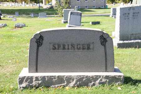 SPRINGER, LYDIA - Tuscarawas County, Ohio | LYDIA SPRINGER - Ohio Gravestone Photos