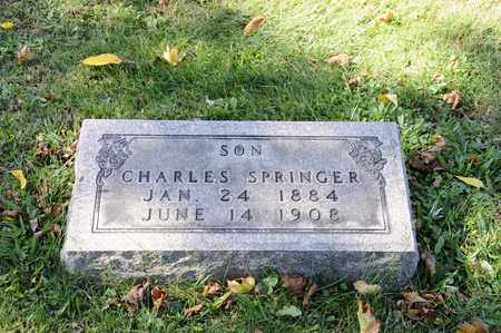 SPRINGER, CHARLES - Tuscarawas County, Ohio | CHARLES SPRINGER - Ohio Gravestone Photos