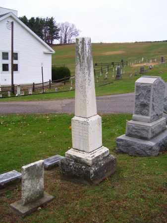 STEINER, ANNA BARBARA - Tuscarawas County, Ohio | ANNA BARBARA STEINER - Ohio Gravestone Photos