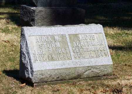 STURM, ANNA M. - Tuscarawas County, Ohio | ANNA M. STURM - Ohio Gravestone Photos