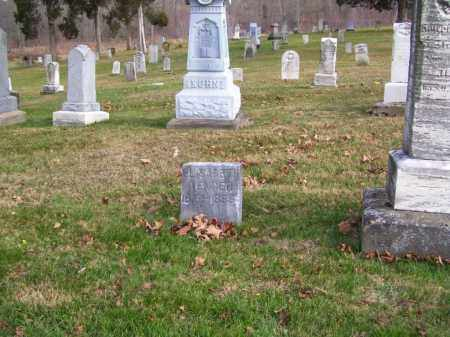 SHERER WENGER, ELIZABETH - Tuscarawas County, Ohio | ELIZABETH SHERER WENGER - Ohio Gravestone Photos