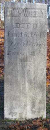 WHERLY, HENRY - Tuscarawas County, Ohio | HENRY WHERLY - Ohio Gravestone Photos