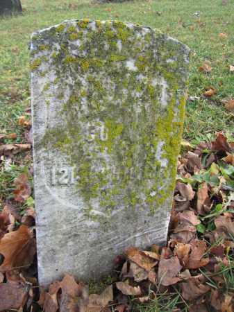 ADAMS, JOHN - Union County, Ohio   JOHN ADAMS - Ohio Gravestone Photos